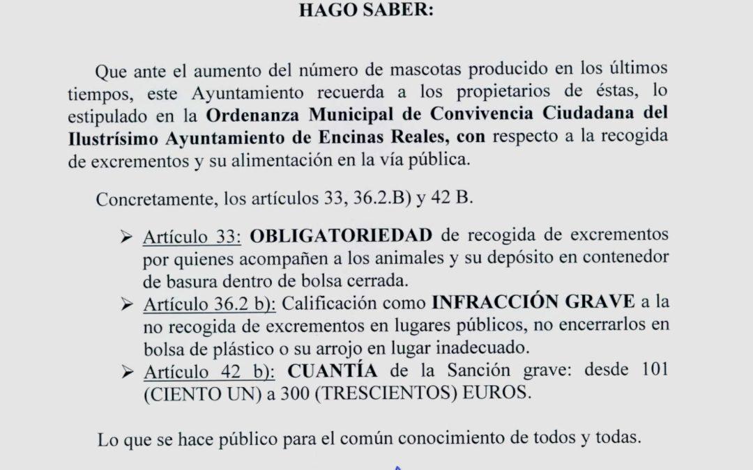 Bando Ordenanza Ciudadana 1